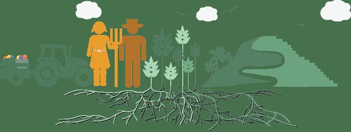 خرید از کشاورزان